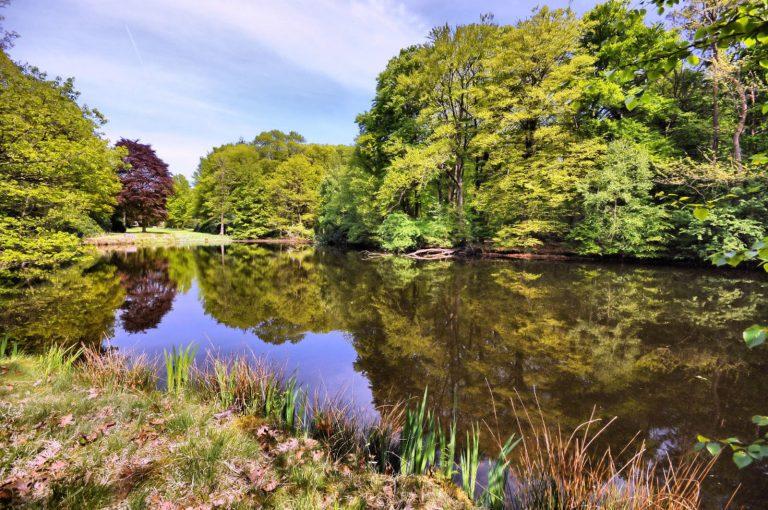 Landgoed-den-Vossenbosch-Locaties-Boenders-Catering-768x510