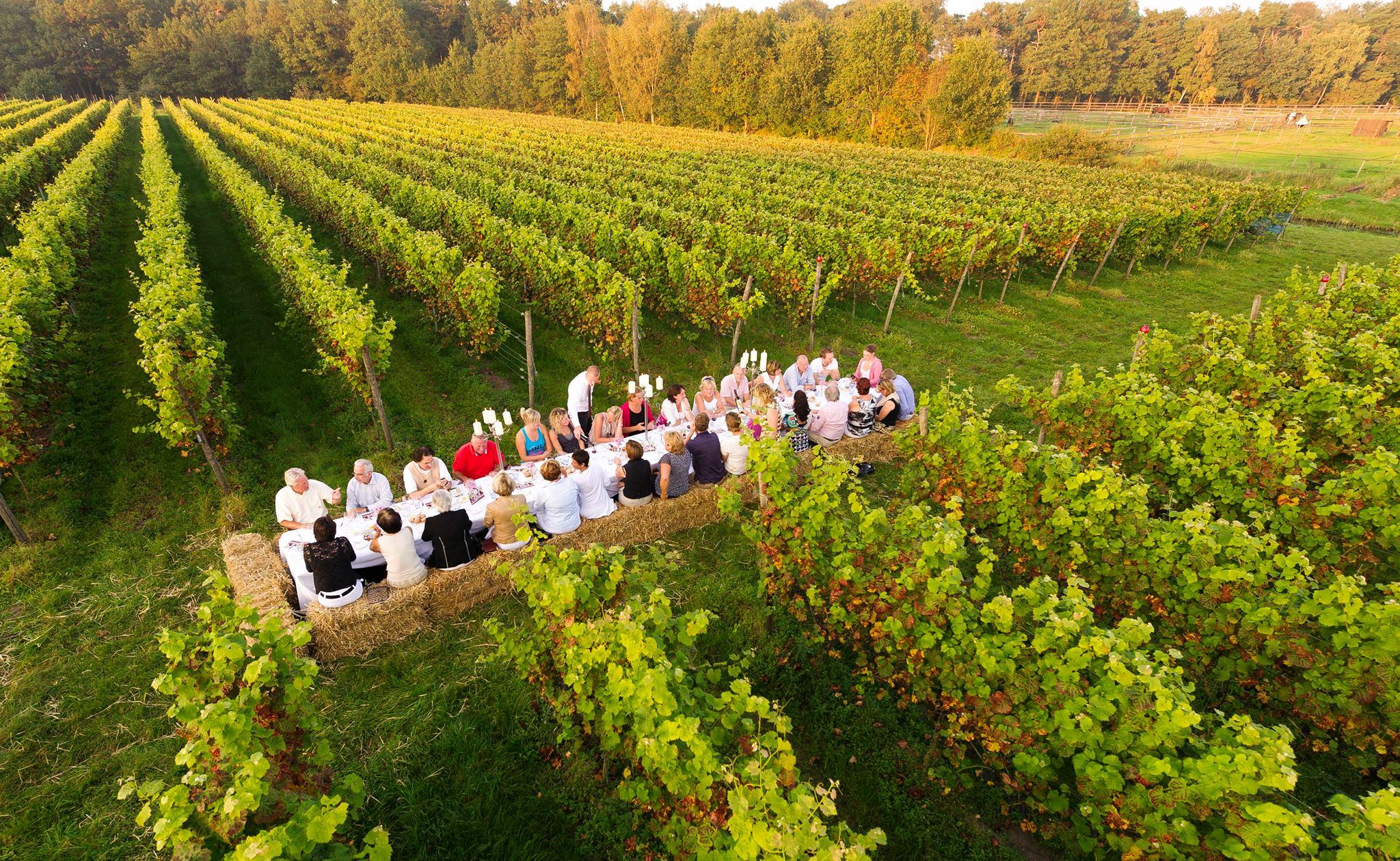 Locatie - Twents Wijngaard Diner