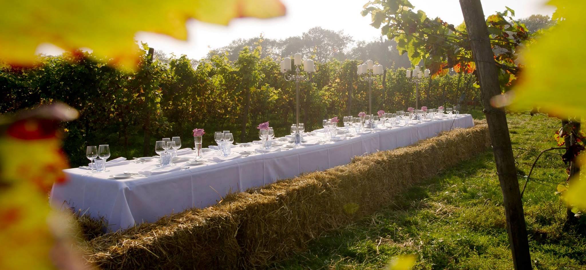 Boenders Catering - Twents Wijngaard Diner - Publieke events