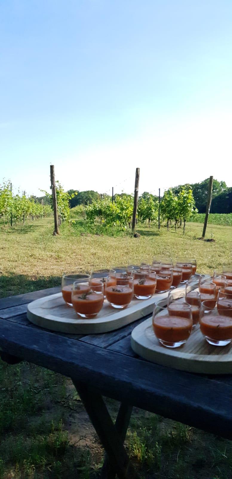 Wijngaard Hof van Twente - Boenders Catering - Locaties - Wijngaarddiner - Amuse