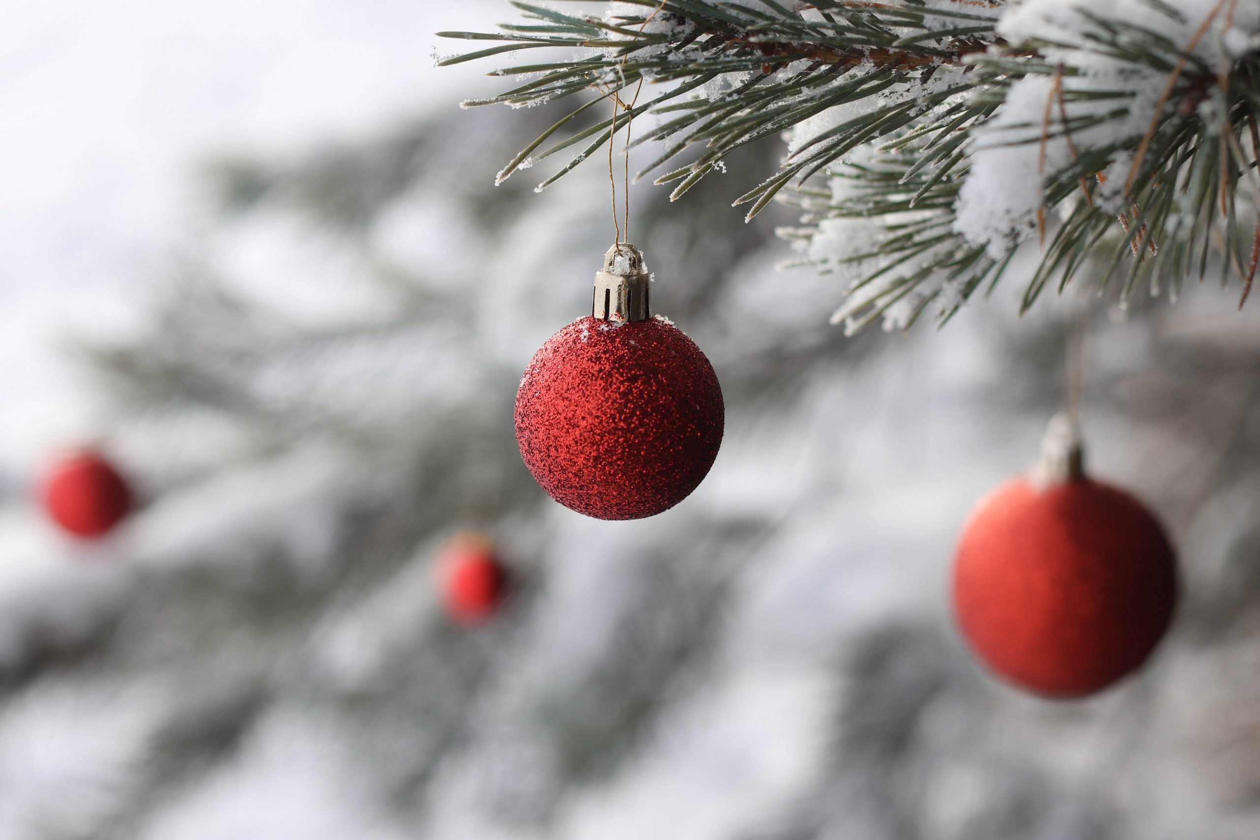 Kerst - Alternatieve kerstborrel - Boenders Catering - Wapen van Beckum